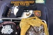 Polícia apreende em Abrantes arma de calibre restrito com quadrilha